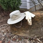 Hats in My Memory part 4 – Unexpected, Versatile, Integrity