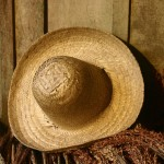 Hats in My Memory part 3 – Farm and Fun.